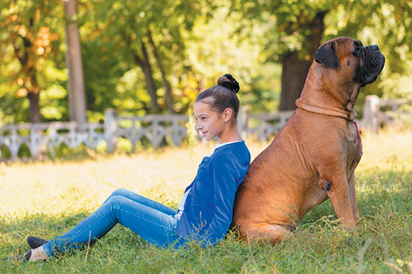 1514037014 5 large breeds that make good apartment dogs - 5 Large Breeds That Make Good Apartment Dogs