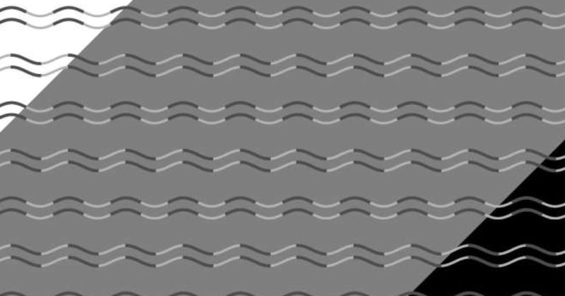 800x420 1513255381 - Optical Illusion That Appears To Show Curved And Zigzag Lines Confounds Scientists