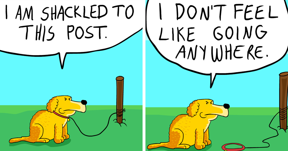 coco the dog ozan draws comics fb - 17 Hilariously Pessimistic Comics About Coco The Jolly Dog That Every Pessimist Will Relate To