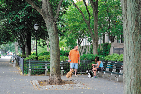1515825795 battery park city is nycs most dog friendly neighborhood - Battery Park City is NYC's Most Dog-Friendly Neighborhood