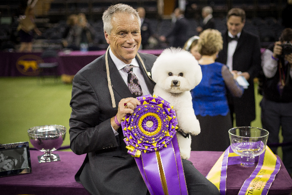 1518655946 flynn the bichon frise wins biggie and bean charm the crowd and more highlights - Flynn the Bichon Frisé Wins, Biggie and Bean Charm the Crowd, and More Highlights